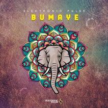 Electronic Pulse - Bumaye