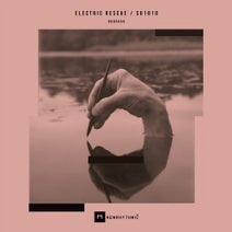 Electric Rescue - Limits Of Social Norms
