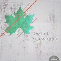 Yosky, Geile Stelle, Real Nice, Testa Rossa, Gio B, Gareth Craig, Dav Schwartz, Haysoul, Soheilovic, Tony Bravo, G&O, Geile Stelle - Best of Funkyroom