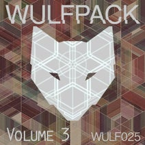 Aaron Jacobs, Disco Aliens, Drew Blyther, Jason Esun, Jordan Strong, Jamie Schwabl, Crescendoll, Midnight Projects, DaVoid, Davy James - Wulfpack, Vol. 3