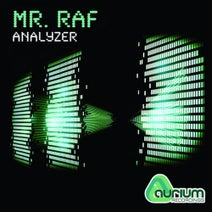 Mr.Raf - Analyzer