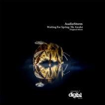 AudioStorm - Waiting for Spring / Be Awake