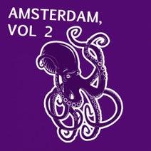 Nu Disco Bitches, Kenji Shk, Klum Baumgartner, Organic Noise From Ibiza, Detroit 95 Project - Amsterdam, Vol. 2
