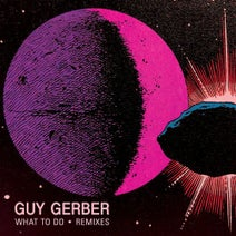Guy Gerber, &ME, DJ Jes - What To Do (Remixes)