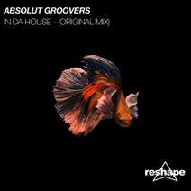 Absolut Groovers - In Da House