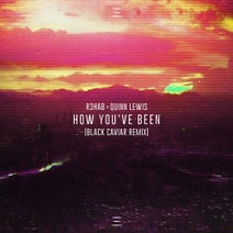 R3hab, Black Caviar, Quinn Lewis - How You've Been (Black Caviar Remix Extended Version)