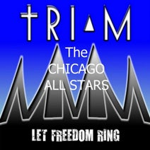 Ondagroove, The Chicago All Stars, Didier Vanelli, Jerry C. King, Steve Miggedy Maestro, C.H.L.P. - Let Freedom Ring
