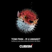 Tom Finn, Lunacy Sound Division, Bedford Falls Players - R U Awake?
