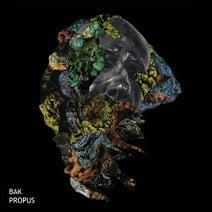 Bak - Propus