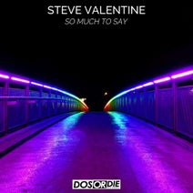 Steve Valentine - So Much to Say