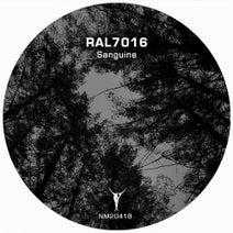 RAL7016 - Sanguine
