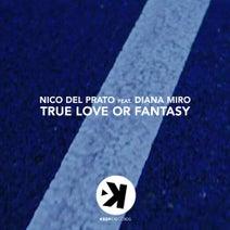 Nico Del Prato - True Love or Fantasy (feat. Diana Miro)
