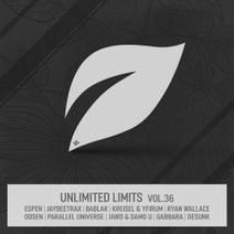 Jaybeetrax, Bablak, Parallel Universe, Damo U, Jawo, Odsen, Desunk, Gabbara, Yfirum, Espen, Kreisel, Yfirum, Ryan Wallace (UK) - Unlimited Limits, Vol.36