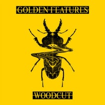 Golden Features, Rromarin, Kult Kyss, Machinedrum - Woodcut (feat. Rromarin)
