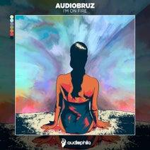 Audiobruz - I'm On Fire