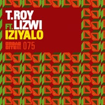 Phil Asher, T.Roy, T.Roy, Lizwi, Cee ElAssaad, Team Distant - Iziyalo (feat. Lizwi)
