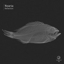 Noaria - Reflection