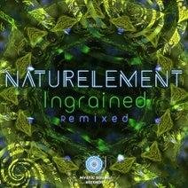 Naturelement, J. P. Illusion, Maiia, Noya Project, Feel, SYGNALS, Jeremy'S Aura, Hypnotizer, Key-G, Dimmat, Bioscape - Ingrained Remixed