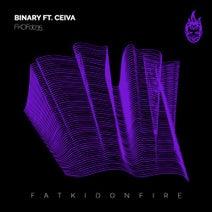 Binary, Ceiva - FKOFd035