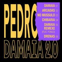 Pedro, Pongo - Damaia 2.0