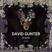 David Gunter - Angels