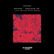 Rolhay, Michael Ritter - Seqroom EP (incl. Michael Ritter Remix)