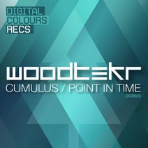 Woodtekr - Point In Time. / Cumulus
