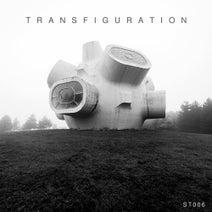 Temudo, Arnaud Le Texier, Kinenz, Michal Jablonski, Process, Betty Hill, Stanislav Tolkachev - Transfiguration VA