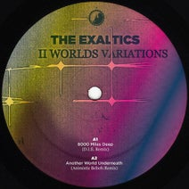 The Exaltics, Detroit In Effect, Animistic Beliefs, Legowelt, The Exaltics - 2 Worlds Variations