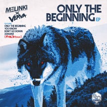 Melinki, Verva, Philth - Only The Beginning