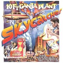 10 ft. Ganja Plant - Skycatcher