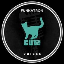 Funkatron - Voices