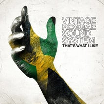 Vintage Reggae Soundsystem - That's What I Like