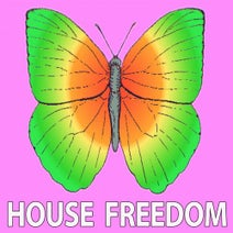 Techno Red, Big Bunny, Rousing House, Mama Maestro, Bunny House, Format Groove, Rousing House - Explore