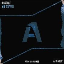 Biggoose - So Down