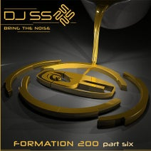 DJ SS - Bring the Noise