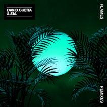 David Guetta, Sia, Robin Schulz, Leandro Da Silva - Flames