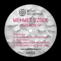 Mehmet Özbek, Shawn Jackson, Ugur Project, Ahmet Sendil - Mehmet Özbek - Here Now EP