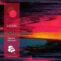 C.E.S.M. - Opposite Dimension