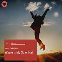 Ngamla, Nestro Da Producer, Dj Nglamla - Where Is My Other Half