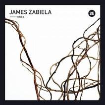 James Zabiela, Earlham Mystics, HOLOVR - Vines