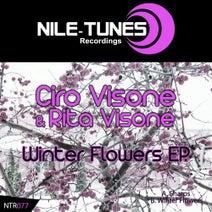 Ciro Visone, Rita Visone, Progrekt - Winter Flowers EP.