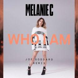 Who I Am (Joe Goddard Remix)