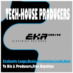 TECH-HOUSE PRODUCERS