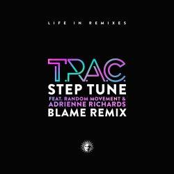 Step Tune (feat. Random Movement & Adrienne Richards) [Blame Remix]