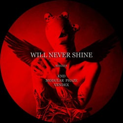 Will Never Shine [The Remixes]