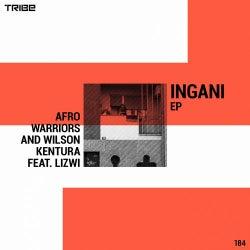 Ingani (feat. Lizwi)