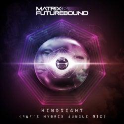 Hindsight (M&F's Hybrid Jungle Mix)