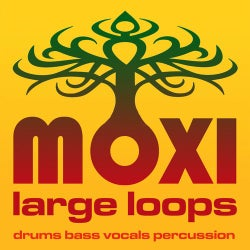 Moxi Large Loops Volume 10
