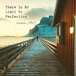 Lebedev (RU) - There Is No Limit To Perfection LP